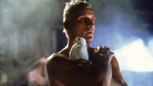 blade-runner-roy-batty-500x281